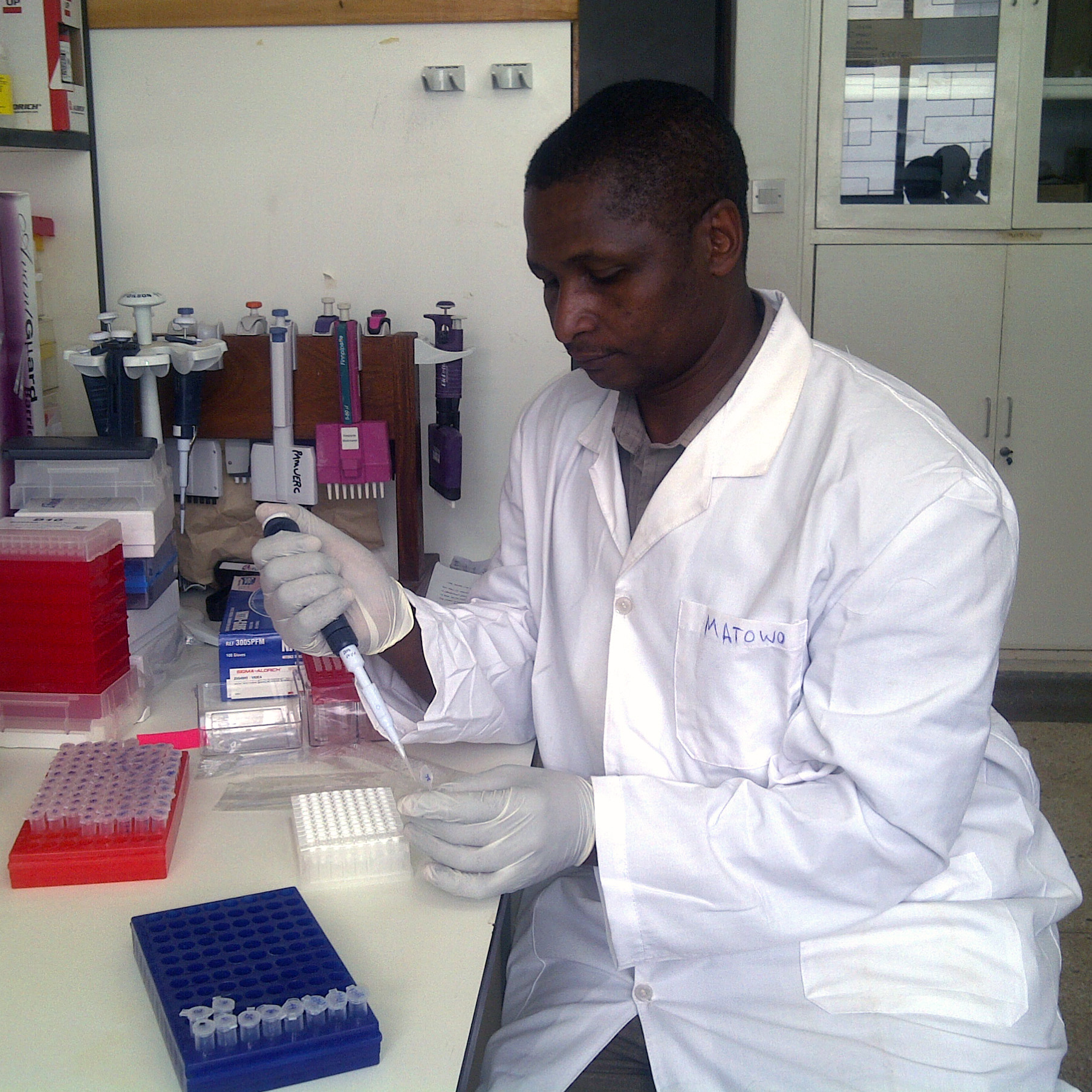 DNA extraction for kdr mutation genotypying by TaqMan assays at Biotechnology Laboratotys